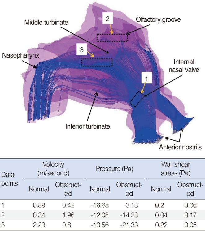 Clinical and Experimental Otorhinolaryngology